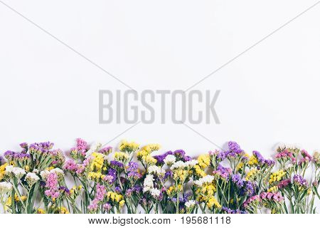 Colorful Wildflowers Lying In A Line On White Background