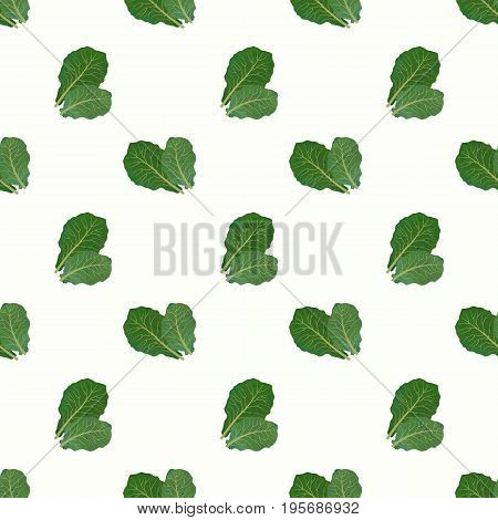 Seamless Background Image Colorful Watercolor Texture Vegetable Food Ingredient Collards