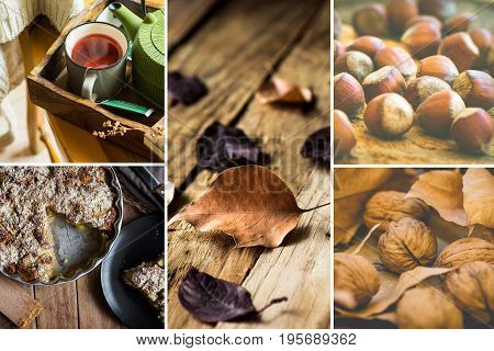 Photo collage autumn fall dry brown red leaves walnuts hazelnuts apple cake mug with red fruit tea book cozy atmosphere kinfolk hygge style