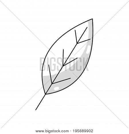 line natural leaf symbol to conservation the environment vector illustration