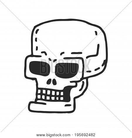 Skull Cartoon. Skeleton Head Drawing On White Background