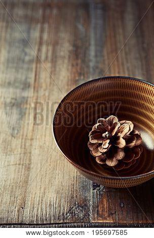 Pine Cone in a Ceramic Bowl