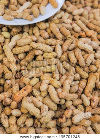Peanut Or Groundnut Boiled For Appetizer