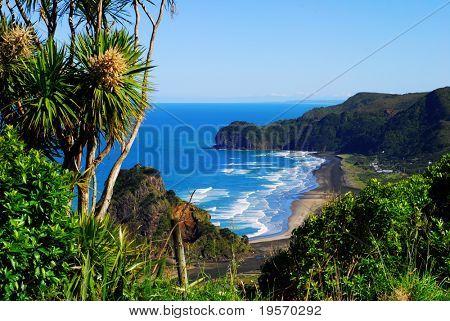 Blick auf ein West-Coast-Strand in Neuseeland