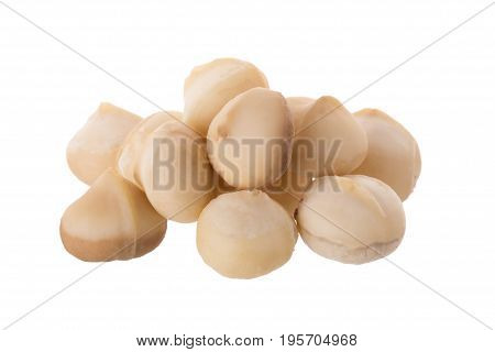 Dried Macadamia Nut Isolated On A White Background