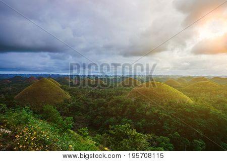 Amazingly shaped Chocolate hills on sunny day on Bohol island, Philippines