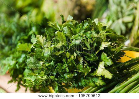 Supermarket shelf Fresh organic herbs on display parsley green onion radish. Fresh organic Vegetables on shelf in supermarket farmers market.