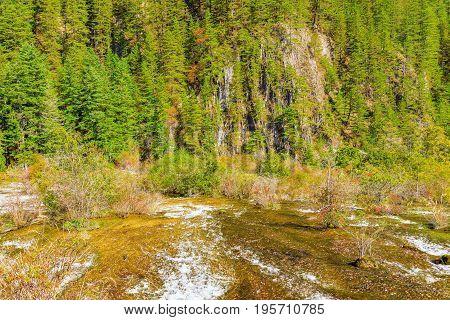 Autumn view of Pearl Shoals with pure water. Jiuzhaigou nature reserve Jiuzhai Valley National Park China