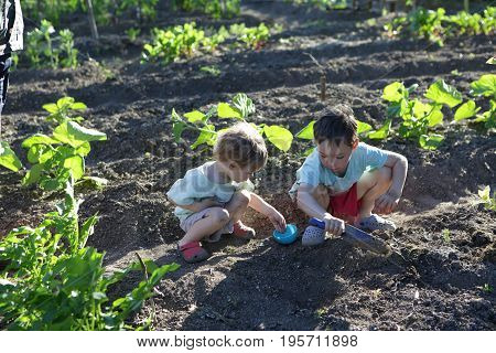 Two children planting seeds in the garden
