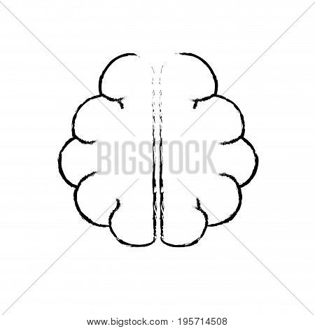 figure anatomy brain to imagination and memory inspiration vector illustration