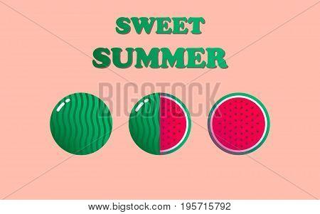 Watermelon. Ripe watermelon. Summer design. Vector illustration.