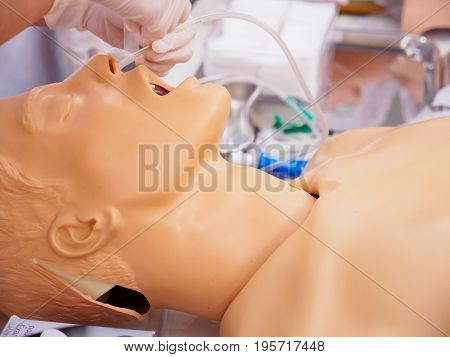 Close-up side shot of a physician practicing the placement of a nasogastric (NG) tube on a plastic dummy. Healthcare and medical education concept.