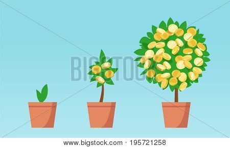 Money tree with coins growing. Business economic investment vector concept