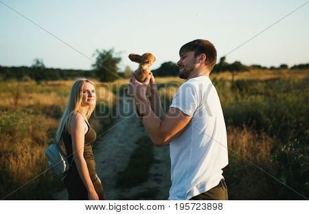 Romantic Couple at Sunset with small puppy of chihuahua dog. Two people in love at sunset or sunrise. Man and woman on field