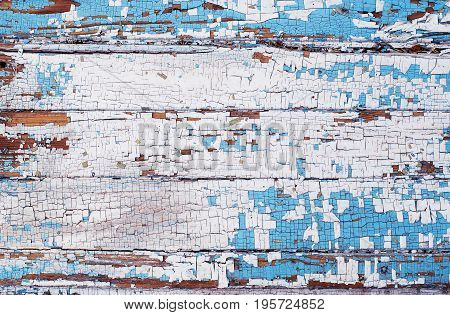 Old wooden textural background made of wood with cracked blue and white paint.