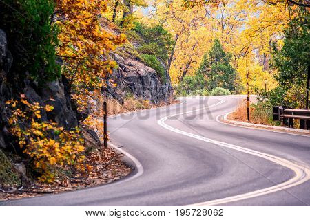 Sequoia National Park Road at autumn. California, United States.