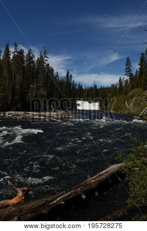 Lewis falls, Yellowstone national park, seen from a small trail