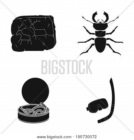 entertainment, history, nature and other  icon in black style.snorkel, swimming, hunting, icons in set collection