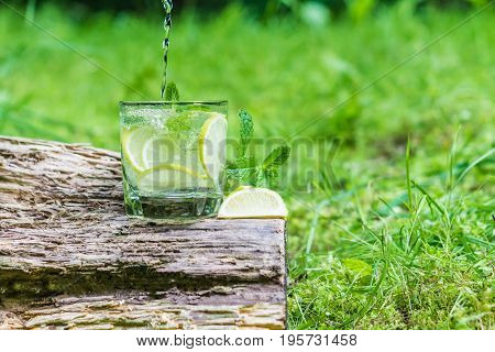 Glass of water with mint and lime on stump. Green grass background.