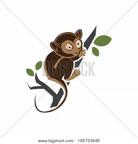Tarsius vector Animal Character. Vector Illustration Isolated on White.