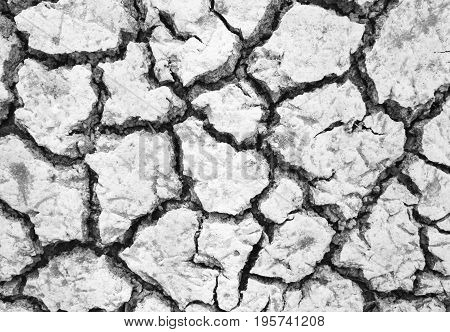 white color arid ground texture in countryside