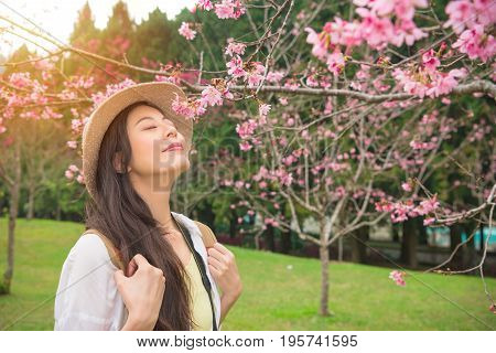 Happy asian woman enjoying smell pink flowers and closed eyes over spring garden background in japan. Beautiful young girl happy and relaxation in a cherry-blossom garden during travel in korea.