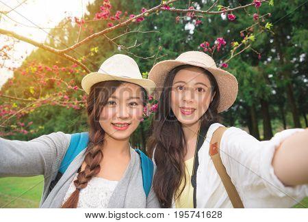 Korea Travel Taking Photo With Cherry Blossom