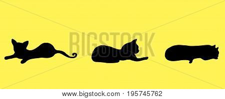 Collection silhouette three black small funny playful kitten isolated on orange background. Vector hand drawin cat in different poses. Illustration set of three decorative cat.