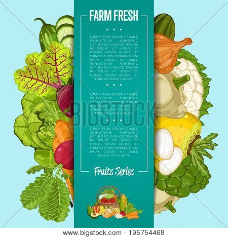 Fresh farm food banner vector illustration. Natural vegetable, organic farming retail, vegan product store poster. Healthy farm food advertising with pepper, carrot, beet, patison, radish, broccoli