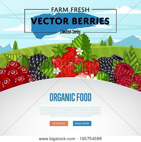 Organic food banner with berries vector illustration. Juicy organic raspberry, blackberry, strawberry, gooseberry on rural landscape. Natural fruit poster, healthy sweet diet, vegetarian nutrition