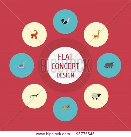 Flat Icons Hippopotamus, Waterbird, Rooster And Other Vector Elements