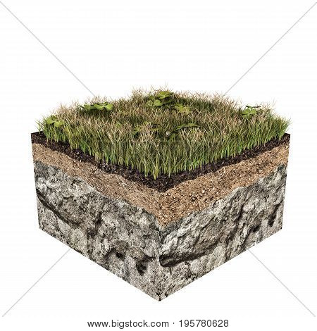 3d illustration of a soil slice isolated on white background