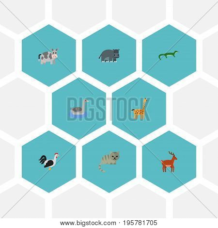 Flat Icons Hippopotamus, Reptile, Camelopard And Other Vector Elements