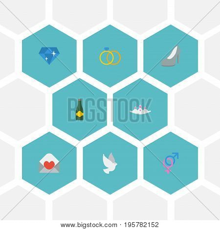Flat Icons Pigeon, Brilliant, Accessories And Other Vector Elements