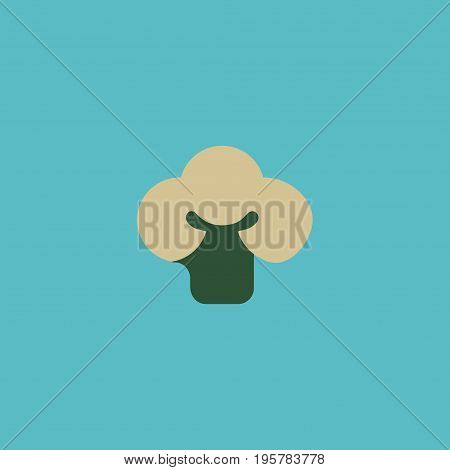 Flat Icon Cauliflower Element. Vector Illustration Of Flat Icon Broccoli  Isolated On Clean Background