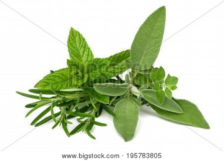 Fresh herbs isolated on a white background