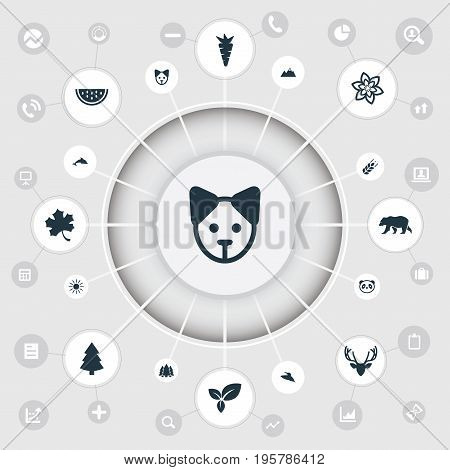 Vector Illustration Set Of Simple Natural Icons