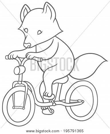 cute cartoon raccoon riding a bicycle - vector hand drawing illustration