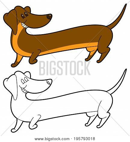 Cute cartoon long dachshund - vector illustation