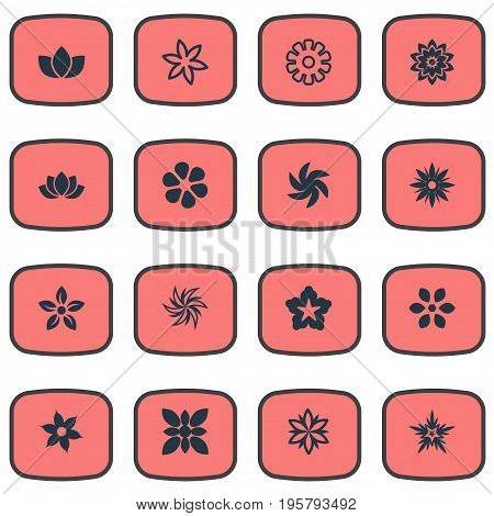 Vector Illustration Set Of Simple Blossom Icons