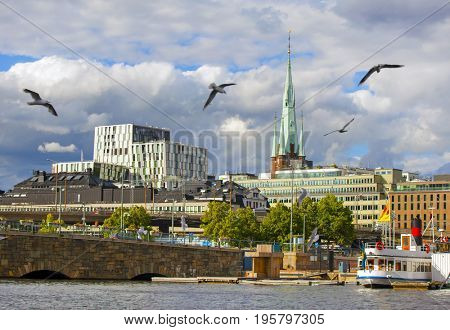 STOCKHOLM, JUNE 22, 2017:Stockholm city at summer and birds flying in the sky