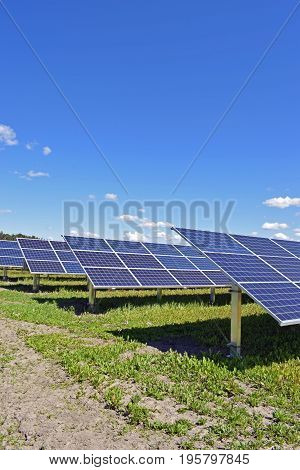 Rows of solar panels. Vertical image with room for text.