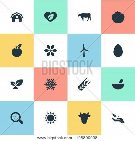 Vector Illustration Set Of Simple Nature Icons