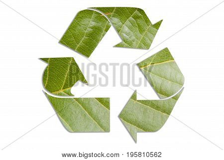 Recycle logo made from natural leaf, concept sign for recyling