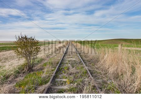 Empty Overgrown Railroad Tracks in Canadian Prairie