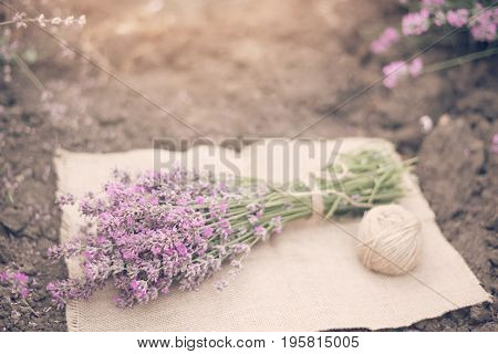 A Bouquet Of Lavender And A Ball Of Twine. Tinted, Sunny Hazy, Haze