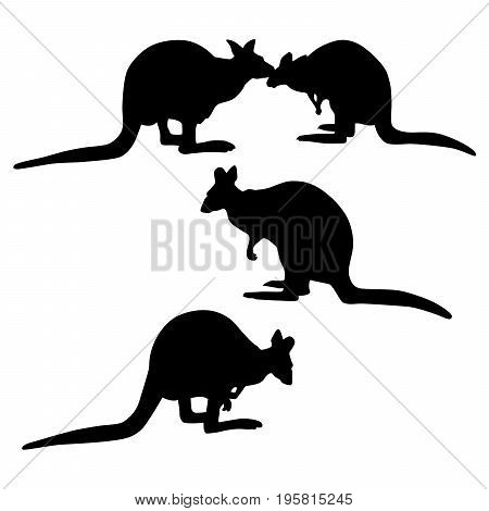 Vector silhouette of a kangaroo isolated on white background.