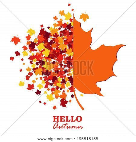 Autumn greeting card with scattered maple leaves and half maple leaf shape. Design concept poster in traditional Fall colors - orange yellow red brown. Vector illustration. Isolated