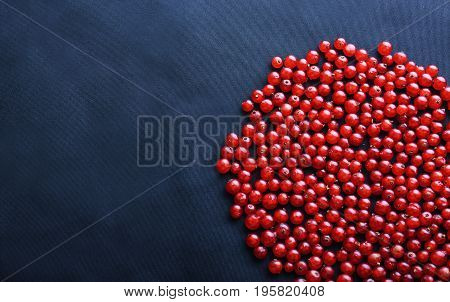 Close-up of fresh, ripe, juicy, raw and healthy currant on the right side on a dark blue background. Bright red fruit of currant. Berries for vegetarian food. Summer harvest from sweet red berries.