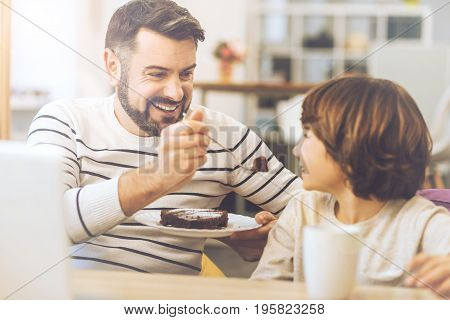 Taste this. Cheerful handsome positive man holding a plate and looking at his son while offering him a cake